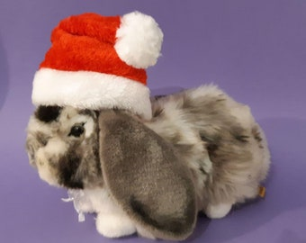 Santa hat for cat, bunnies,  small dogs / Santa hat for cats, Santa hats for dogs, costumes for cat, costume for dog