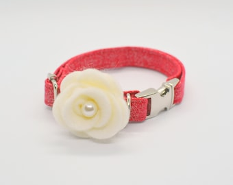 Glittery cat collar / kitten collar / small dog collar / safety cat collar / non-breakway cat or dog collar / breakaway cat collar