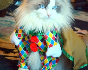 Cat costume / dog costume /fancy costume for pet /Funny Costume for Pet / cape for cat/ cute pet costume /harlequin