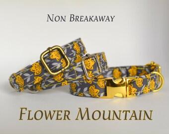 Collars: Non-breakaway