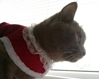 Costume for pet /Christmas costume for cat or dog / pet costume / cute cat costume /red fancy costume pet /Red with fur trimming costume