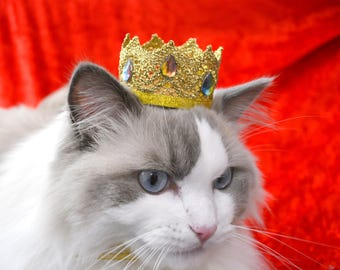 Golden King crown hat for cat with rhinestones - Royal Red Hat for Regal Cats - Royal Crown Hat - Costumes for cat and dog / Crafts4Cats