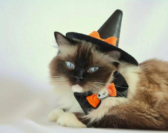 Witch's hat for cat - Halloween cat hat - Halloween costumes for cat - pet photography props - witches hat for dog