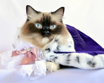 Luxury Royal Cat  Costume - Baroque style Velvet Cloak Costume for Cats Ermine faux fur - Royal Cloak Dogs - King cat  costume