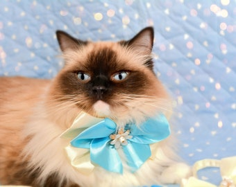 Bow tie for cats / cat bow tie with collar / fancy cat bow ties / blue bow tie for cat / fancy satin bow tie / Crafts4Cats