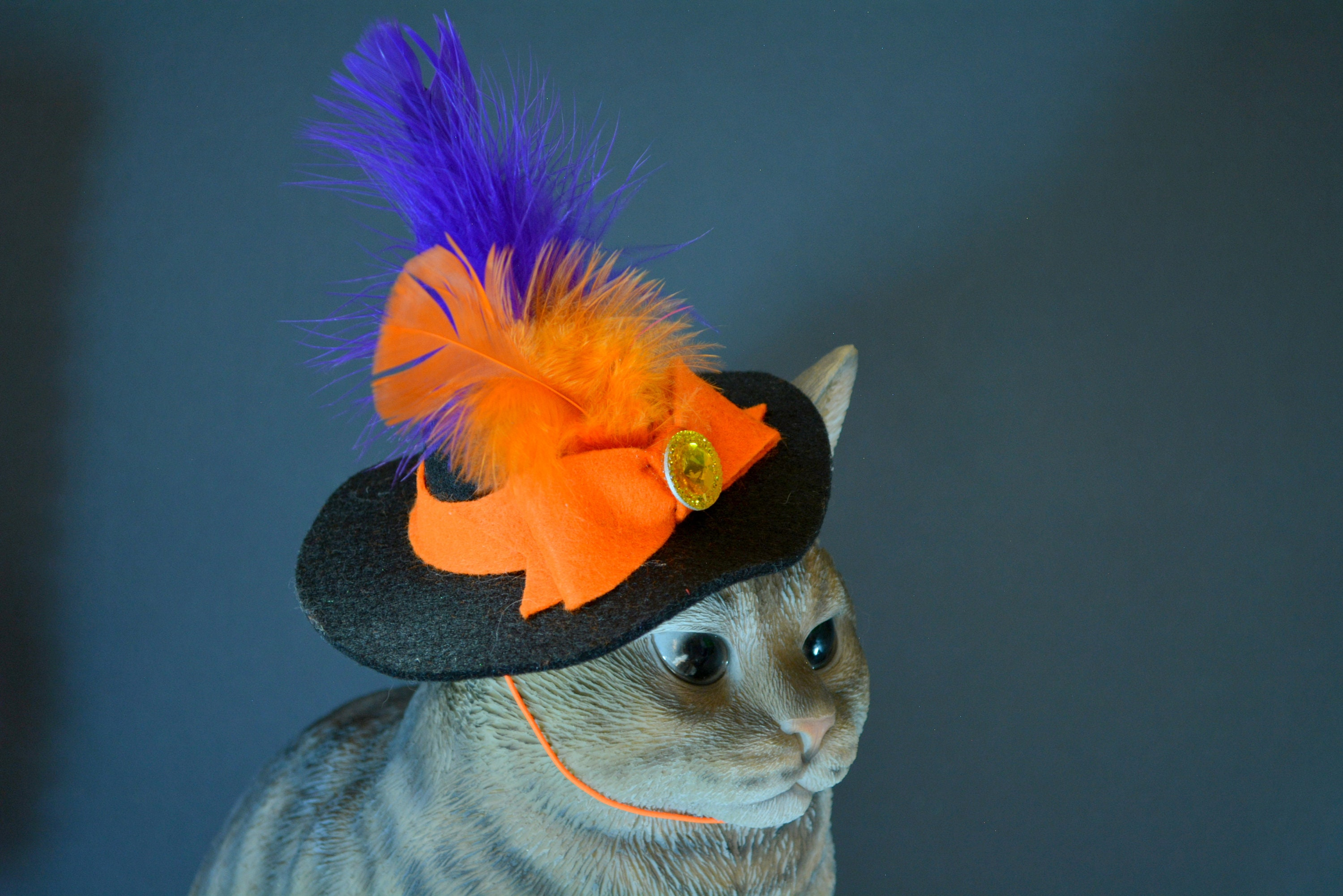 Witchs Hat For Cat Halloween Cat Hat Halloween Costumes For Cat
