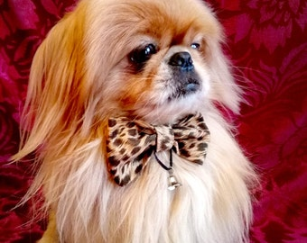 Leopard bow tie for dog - Valentine's day dog bow tie with collar and bell - dog bow ties - cute dog bow tiesBlack Friday
