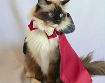 Cat cape costume 'Countess Dracula Cape'  costume pet - Halloween cat costume pet reversible - Dracula cat top hat costume
