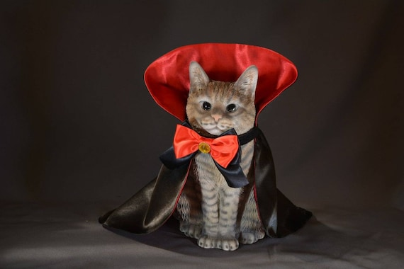 Halloween costumes for cats //Countess Dracula//cat pet costumes for cats,  Dracula cape for pet dog, handmade costume by Crafts4Cats