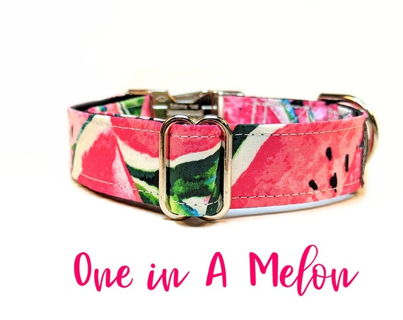 Watermelon Buckle Collar: Pink summer girly dog collar; black satin lined; silver hardwares; adjustable lengths