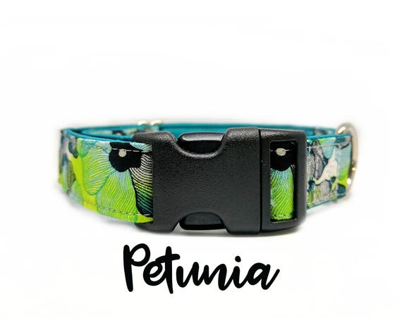 "Flower Buckle Dog Collar: Floral blue and green print, teal satin lining, 1"", 1.5"", 2"" widths available, plastic buckle, adjustable sizing"