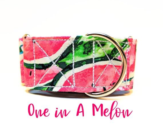 Watermelon Martingale Collar: Pink summer girly dog collar; black satin lined; silver hardwares; adjustable lengths