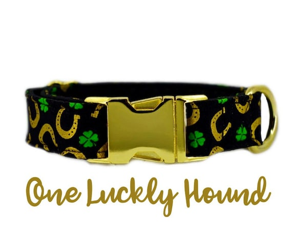 "Brass buckle Dog Collar: Shamrock, Lucky Dog, Golden Horseshoes; St Patrick's Day; 1"",1.5"",2"" widths available; Brass Hardware; satin lined"