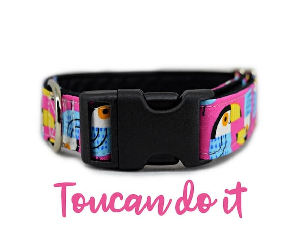 Pink Summer Dog Collar: Bright Toucan tropical bird print; satin lined;  adjustable sizing; multiple widths available