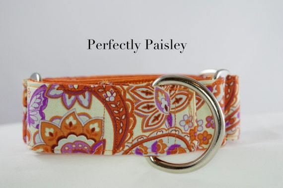 Perfectly Paisley (purple and orange): Martingale or Buckle  Dog Collar