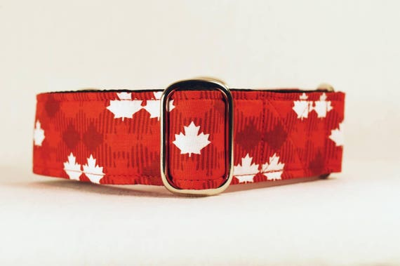 Canada Day Maple Leaf Martingale Collar: Canada 150, Argyle style
