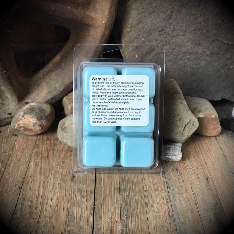 Wax Warmer Wax Melts Christmas Natural Bees Wax Soy Wax Candle Melt TayTays Soap Snow and Tell Wax Melt winter