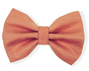 Pet bow tie | TERRACOTTA | For cat, kitten, dog, puppy |