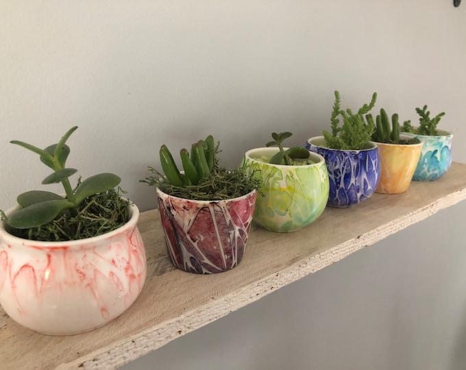 Hand-Painted Ceramic Planters