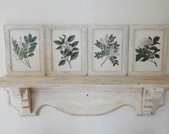 Botanical Prints Set of Four vintage botanical prints, herb prints, farmhouse decor ,  framed botanicals