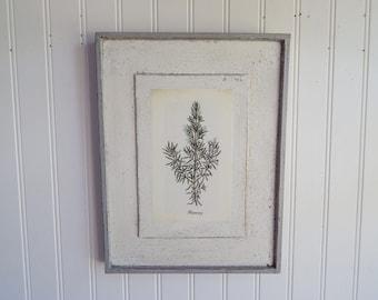 Antique Botanical Herb Print on Wood vintage botanical print, antique botanical print, botanical prints, garden print, herb print