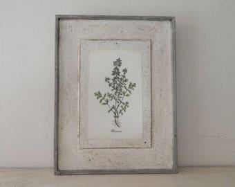 Antique Botanical Herb Print on Wood vintage botanical print, botanical prints,farmhouse decor, garden print, herb print