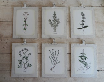 Antique Botanical Herb Prints on Wood  Set of Six  vintage botanical prints, botanical prints, farmhouse decor, herb prints