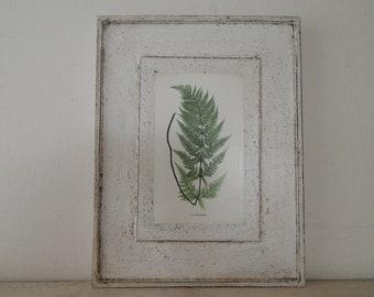 Antique Botanical Fern Print on Wood vintage botanical print, botanical prints,farmhouse decor, garden print, fern print