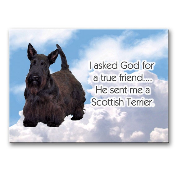 Scottish Terrier True Friend Fridge Magnet