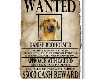 Danish Broholmer Wanted Poster Fridge Magnet