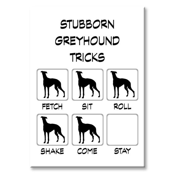Greyhound Stubborn Tricks Funny Fridge Magnet