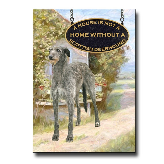 Scottish Deerhound a House is Not a Home Fridge Magnet