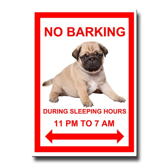 Pug No Barking Fridge Magnet No 3 Puppy Fawn