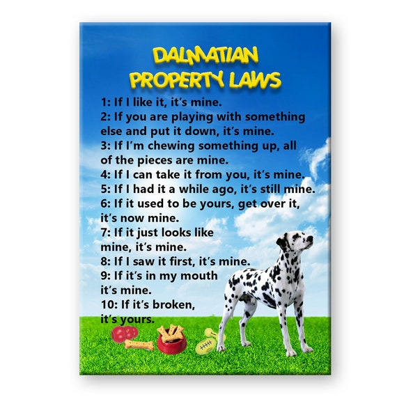 Dalmatian Property Laws Fridge Magnet