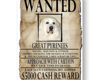 Great Pyrenees Wanted Poster Fridge Magnet