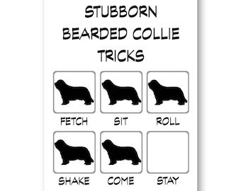 Bearded Collie Stubborn Tricks Fridge Magnet