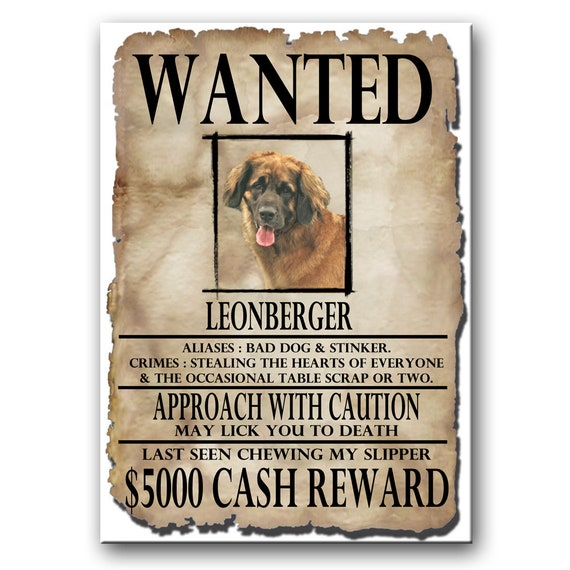 Leonberger Wanted Poster Fridge Magnet