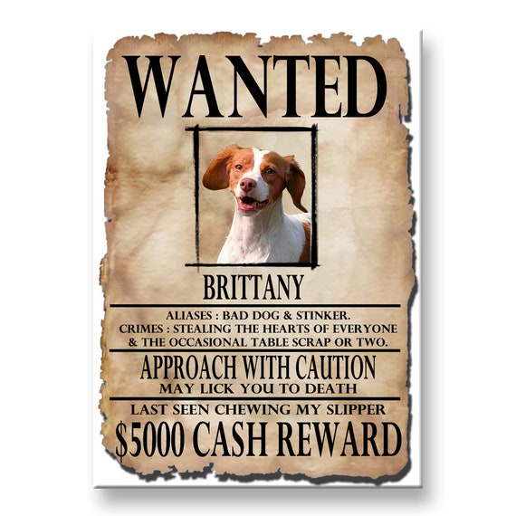 Brittany Wanted Poster Fridge Magnet