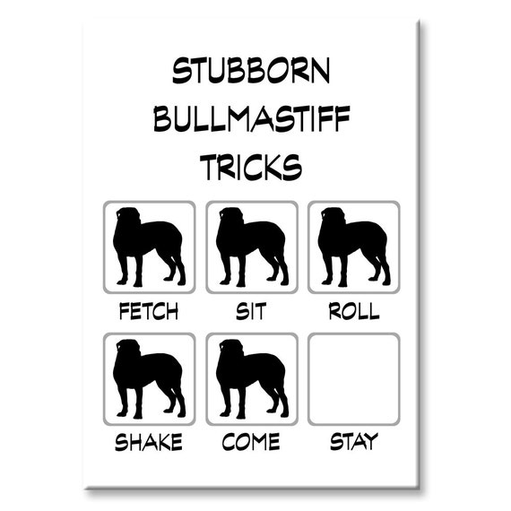 Bullmastiff Stubborn Tricks Funny Fridge Magnet