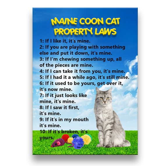 Maine Coon Cat Property Laws Fridge Magnet No 1