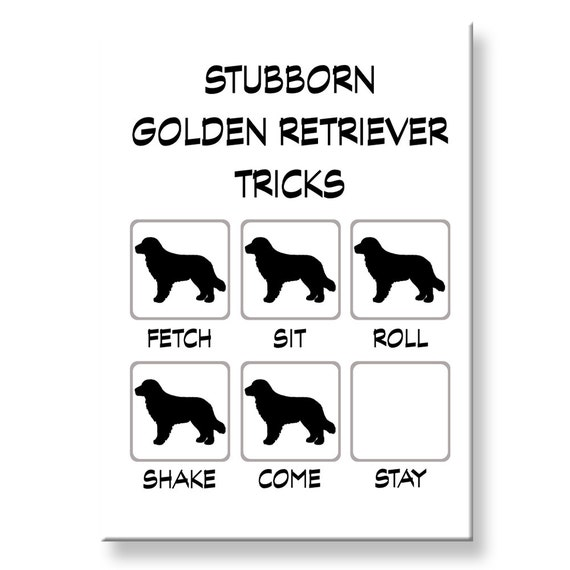Golden Retriever Stubborn Tricks Funny Fridge Magnet