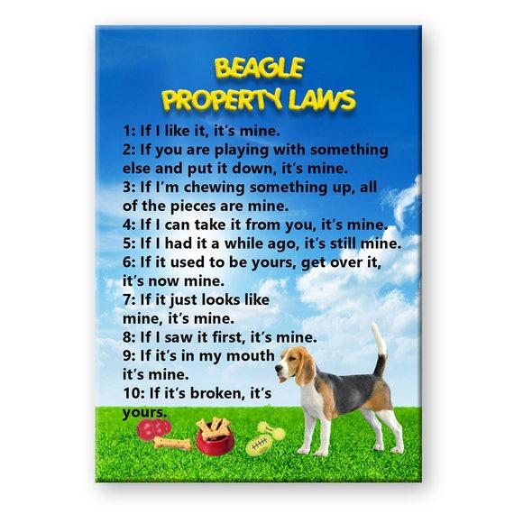 Beagle Property Laws Fridge Magnet