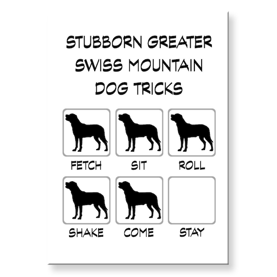 Greater Swiss Mountain Dog Stubborn Tricks Funny Fridge Magnet