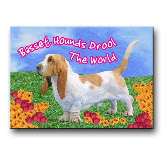 Basset Hound Drool The World Fridge Magnet