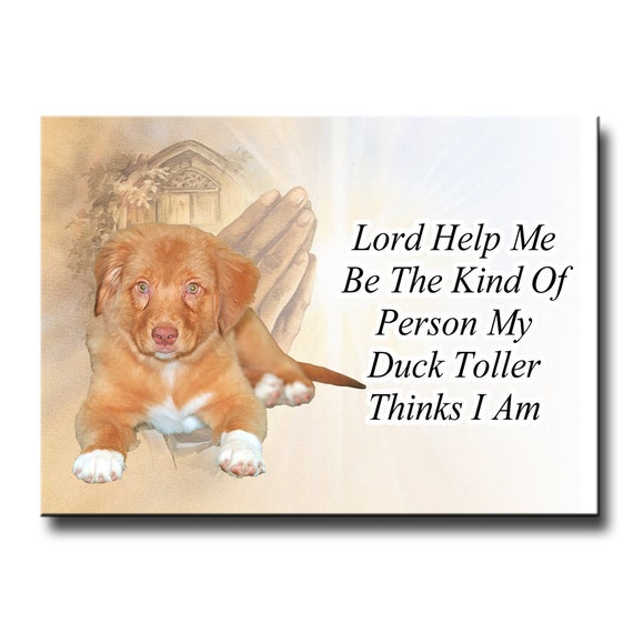 Nova Scotia Duck Tolling Retriever Lord Help Me Be Fridge Magnet