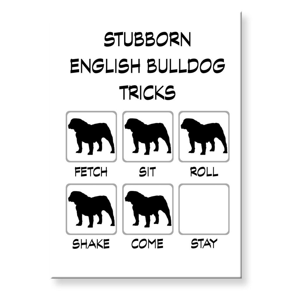 """Funny Bulldog fridgerator magnet 2 1//2 X 3 1//2 /"""""""