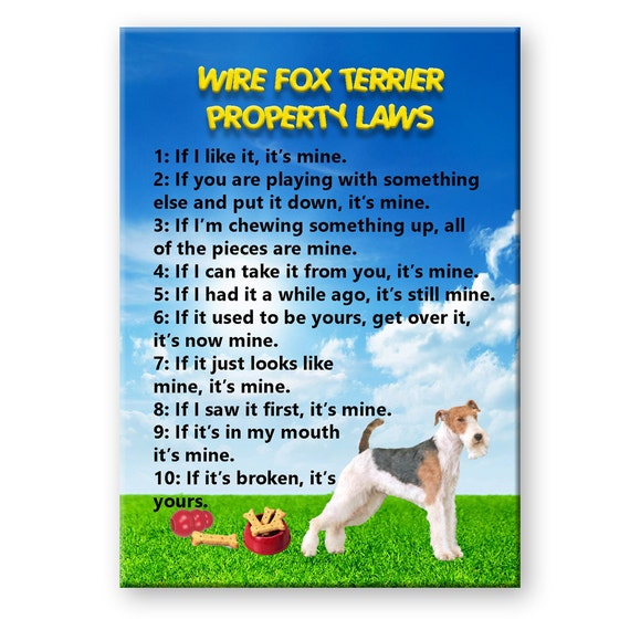 Wire Fox Terrier Property Laws Fridge Magnet No 2