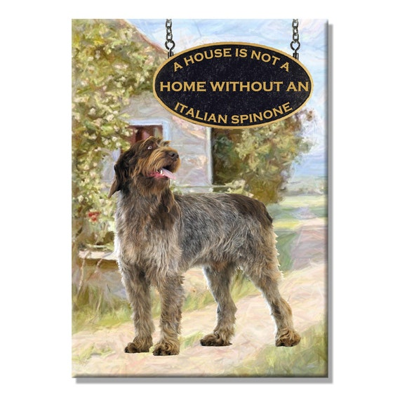 Italian Spinone a House is Not a Home Fridge Magnet No 2