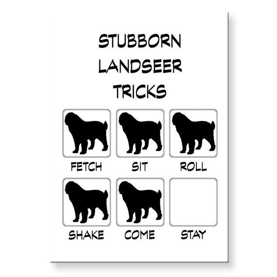 Landseer Stubborn Tricks Fridge Magnet