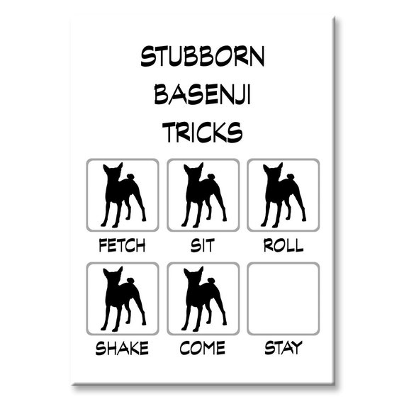 Basenji Stubborn Tricks Fridge Magnet